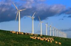 Otrdien, 29. septembrī, Rīgā noritēja vērienīga konference par atjaunojamo energoresursu apguves veicināšanu Latvijā. Konferenci organizē Eiropas reģionālā attīstības biedrība (ERAB)...